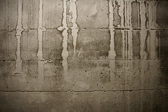 Damp Proofing in Ormskirk