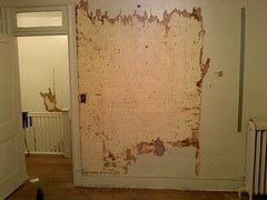 Rising Damp Treatment in Litherland