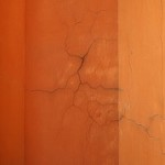 Dry Rot Specialist in Woolton