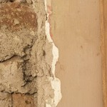 dry rot specialist in Lydiate