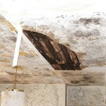 damp proofing in Waterloo